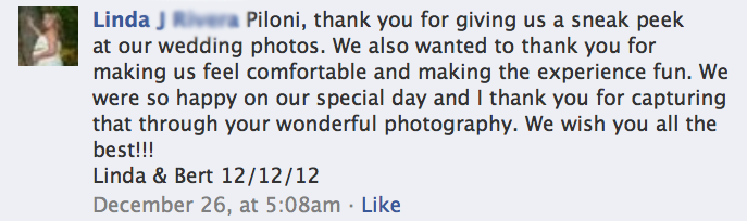 Elusive Visions - Hawaii Weddig Photographer Testimonials 12